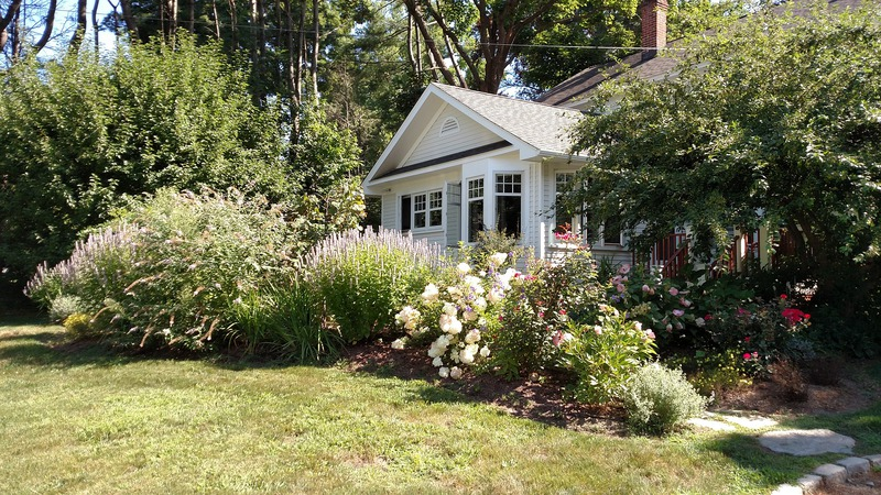 Choosing The Best Flowering Shrubs For Your Front Yard Homescape Now